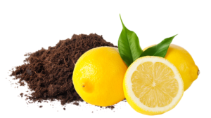 peat and lemon ingredients for homeopathic remedy to counter environmental fatigue